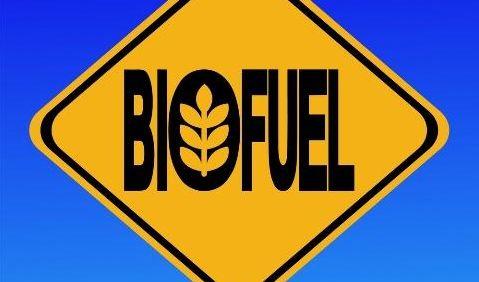 biofluel