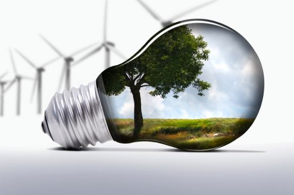 lampada-albero1